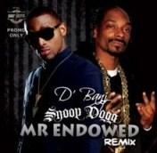 """D'Banj - """"Mr Endowed"""" (Remix) ft. Snoop Dogg"""